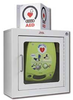 AED Wall Cabinet (surface mount)